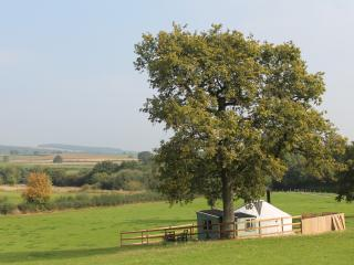Beautiful views, whichever way you look from Acorn Yurt.