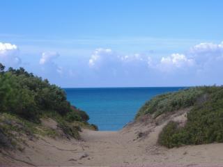 villa  200 metri dalla spiaggia Piano terra