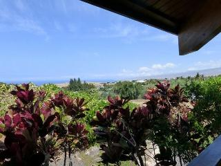 Distinctive Custom Cedar Home -with Ocean & Mountain Views!, Waikoloa