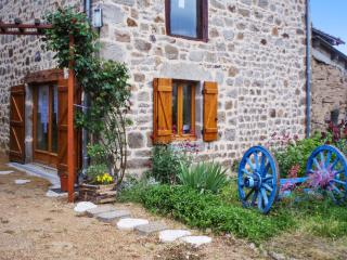 Rustic house near the medieval town of Thiers, with mountain-view terrace & central heat - sleeps 10, Sermentizon