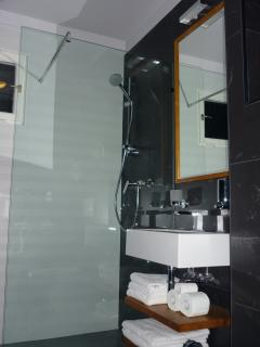 newly renovated bathroom, italian tiles, italian design bathroom fixtures, walk in shower