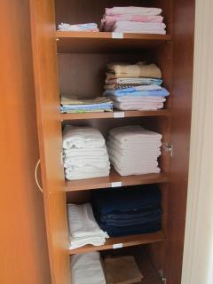 Linen Closet (bed sheets, towels, etc.)