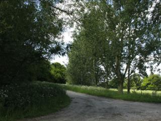 linhay farm- dog friendly quiet, secluded location