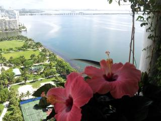 Downtown luxury Apt. Amazing water view !!!!, Miami