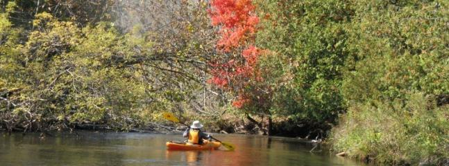Kayak the Sturgeion River, end at your cabin, we are almost to the mouth of Burt Lake