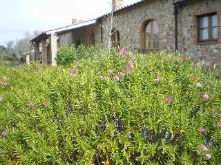 Antico Convento di Montepozzali Carlotta, Massa Marittima