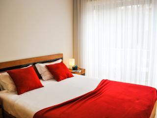apartamentos portodouro st.catarina, Oporto