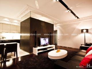 Two-roomed VIP apart  forbyday rent on Nevskiy 137, St. Petersburg