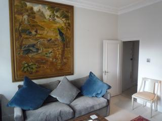Lovely 1 bedroom flat in Chelsea, Londres
