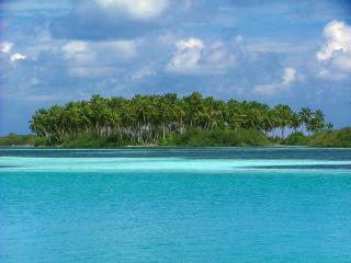Rasreef & Scuba Maldives Rasdhoo