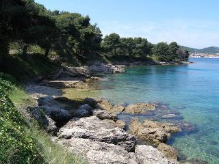 Island Osljak(Zadar)-House for rent