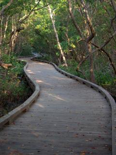 just 10 minute walk to beautiful Baywalk at Coquina Beach nature preserve.