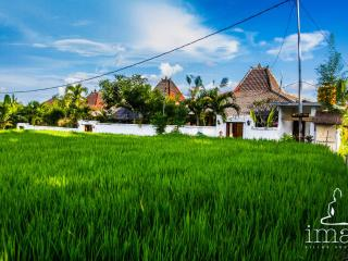 Iman Villas Real Bali Luxury in Ubud 2