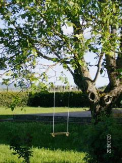 The walnut garden with a swing