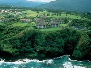 Cliffs at Princeville #7302-OCEANBLUFF! Wash/dryer