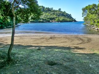 Beachside flat with WiFi & terrace, Smokvica