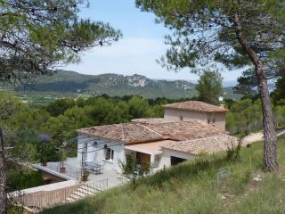 Villa in Provence sleeps 12 July/August 2015 pool, Rognes