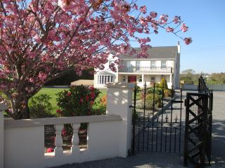 Spacious 8 BR Private House  sleeps 15- free WiFi-, Killarney