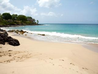 Maison de la Caraïbe, sur la mer , jardin privé