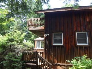 Wiggand's Old Forge Adirondack Cabins - Cozy