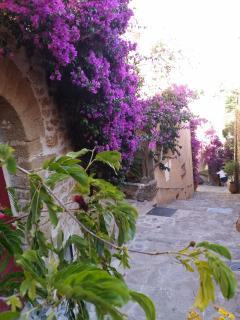 Vieux village de Bormes-Les-Mimosas