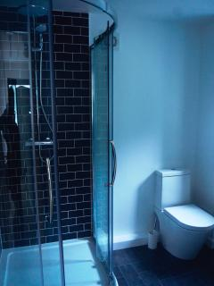 Large shower room with power shower, toilet and wash basin