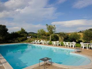 Gorgeous outdoor pool surrounded by rolling hills and sunflower fields