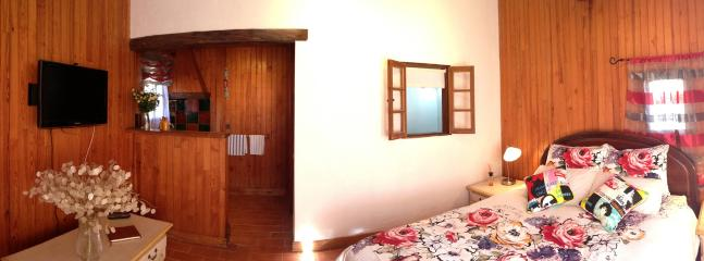 The newly renovated studio, with separate bathroom and kitchenette
