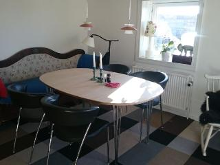 Spacious Copenhagen apartment near nice parks, Copenhague