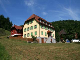 Vacation Apartment in Schuttertal - 861 sqft, 1 living room / bedroom, max. 2 people (# 6067)
