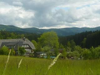 Vacation Apartment in Elzach (# 6143) ~ RA62924