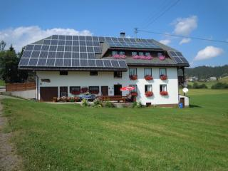 Vacation Apartment in Ibach - 753 sqft, max. 5 people (# 6225)