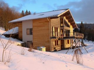 Chalet flat near Lake Gérardmer, Gerardmer