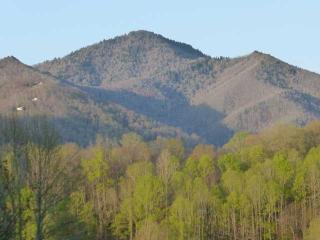 Chalet de montagne, Maggie Valley