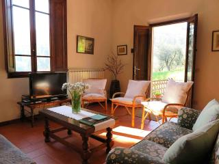 Cantina for 6 in Tuscan hills, Casalguidi