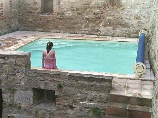 House with  pool in heart of Saint Antonin