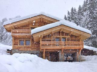 Black Diamond Lodge, Chamonix