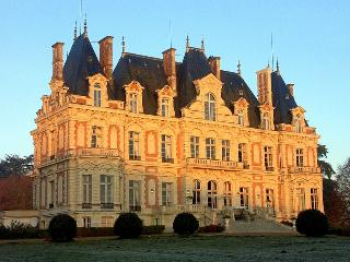 Château colombe, Vergonnes