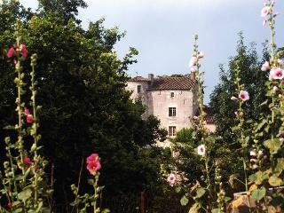 Chateau D'ax - Chateau Only, Saint-Daunes