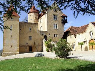 Chateau De Bearn, Escures