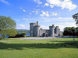 Gothic Castle Estate, Gort