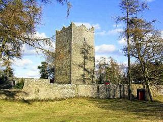 County Meath Castle, Fennor