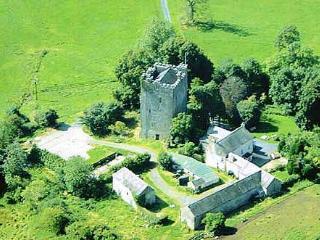 15th Century Castle, Borris-in-Ossory