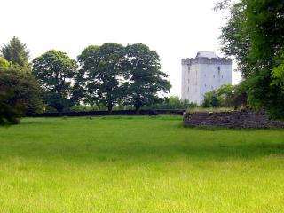 Deburgo Castle, Kilmaine
