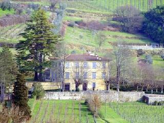 Villa Salica, Serravalle Pistoiese
