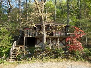 Lake Lucerne 1930s Treehouse Cabin - Lake Front, Amazing View, Large Decks, Authentic Architecture, Eureka Springs