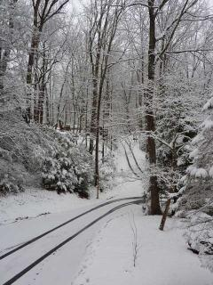 Every season is beautiful.