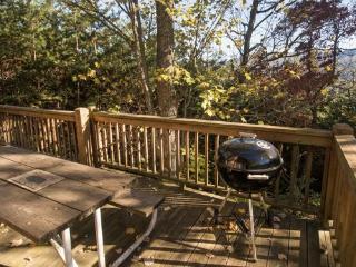 Deep Creek Fishing Retreat - Two bedroom getaway with hot tub, Bryson City