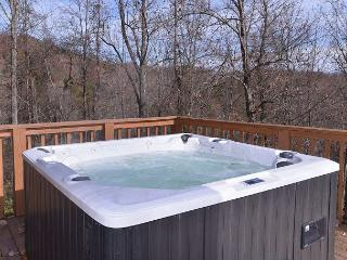 Giant 10 hp private premium hot tub