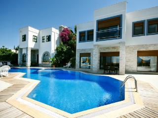 438-4 Bedroomed Luxury Villa in Yalıkavak, Yalikavak